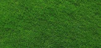 in my last article i wrote about creating a new lawn in that post i discussed several ways to build a new lawn including the two most well known methods