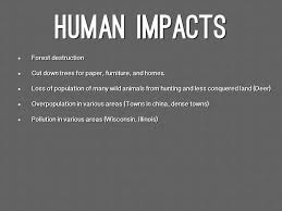 essay on human impact on the natural environment