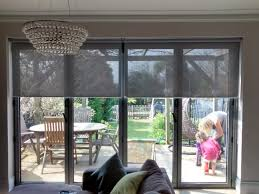 Pros And Cons Of Blinds Between Glass Panes  Through The Front DoorBlinds In Windows Door