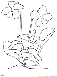 Small Picture Awesome Realistic Flower Coloring Pages Images Printable
