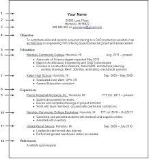 No Job Experience Resume Example Joefitnessstore Com