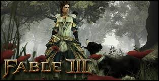 Fable III (PC CD : PC & Video Games
