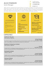 Yellow Grey Professional Resume Word Resume Templates Microsoft