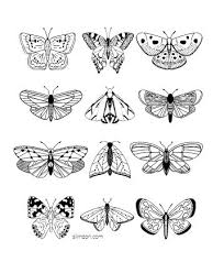 From caterpillar to butterfly, these free butterfly coloring sheets are fantastic for preschool students. Free Printable Butterfly Coloring Pages And Templates