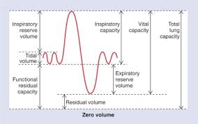 Lung Capacity Chart By Age Inspiratory Reserve Volume An Overview Sciencedirect Topics