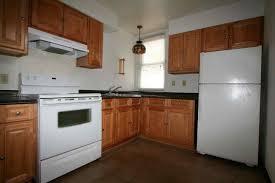 homey best dark kitchen cabinets with white appliances ideas on homey amazing wood countertop