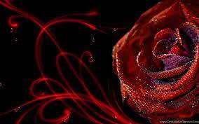 3D Rose Desktop Background