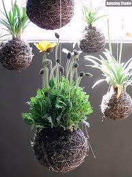 picturesque design ideas hanging garden marvelous beautiful you