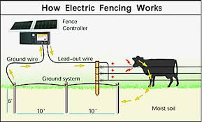 wire electric fence schematic wiring diagram list diagram also electric fence wire installation further parmak wire electric fence schematic