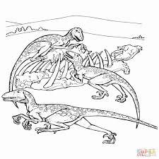 Dinosauri Da Colorare On Line 50 Dinosauro Da Colorare Per Bambini
