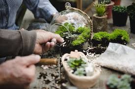 15 All-Inclusive Terrarium Kits to Help Naturally Brighten Your Home