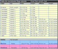 Great Dane Food Chart Great Dane Food Chart In India Great Dane Puppies For