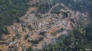 amazon rainforest deforestation. Beautiful Rainforest Free Exchange To Amazon Rainforest Deforestation B