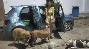ชายใจบุญเห็นใจ ประกาศตามหา เจ๊หงษ์ กับน้องหมาทั้ง 6 เสนอยกบ้านให้พักฟรีๆ  มีบริเวณรั้วรอบขอบชิด - thousandreason