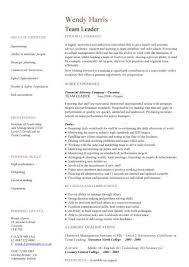 sample resume team leader