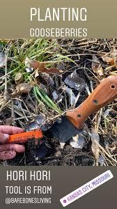 this hori hori tool from barebones living is one of my new favorite gardening tools