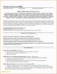Resume For Real Estate Agent Sample Resume Insurance Agent