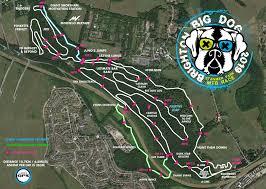 race log details brighton big dog
