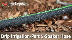 drip irrigation part 5 using soaker hose in the garden