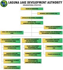 Organizational Structure Llda