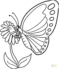 Butterfly Coloring Pages To Color Online Pics Free For Toddlers