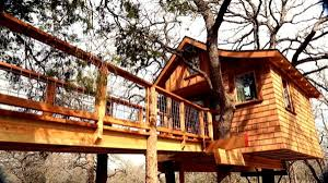 treehouse masters spa. Treehouse Masters Spa Y