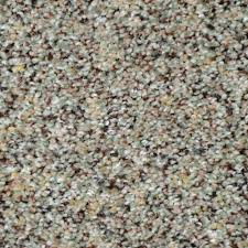 home decorators collection carpet sample nevada color grass