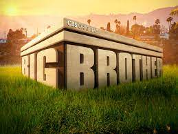 'Big Brother 23' Cast: Meet the 16 New ...