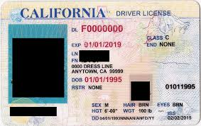 Fake - Pukka License Drivers Documents