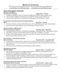 Resume Sample For Leasing Consultant Plks Tk