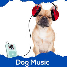 <b>Dog Music</b> ( Music for My Dog | Ambient Dog Calming Music | Pet ...