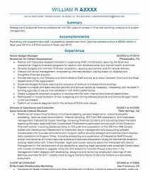 Examples Of A Summary For A Resume Magnificent Executive Summary Resume Samples Exotic Best Director Resume Example