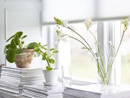 Deko Für Fensterbänke Die Schönsten Ideen Für Sie Planungswelten