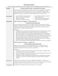 Insurance Resume Examples Underwriter Cover Letter Template Auto