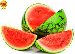"""Résultat de recherche d'images pour """"super melon japon"""""""