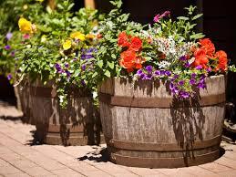 istock 3777830 barrels in garden with flowers s4x3 jpg rend