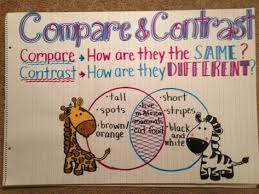 Compare And Contrast Anchor Chart Kindergarten Anchor
