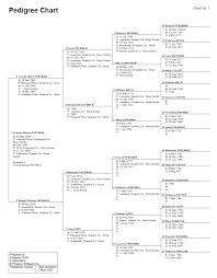 pedigree tree pedigree sample family tree charts