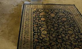 area and persian rug cleaning services