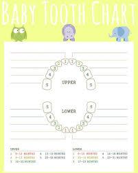 Teething Isnt For Babies Gift Basket Baby Teething Chart