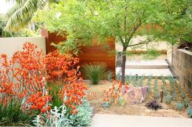 Small Picture Drought Tolerant Landscape Design Plans Drought Tolerant Front