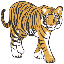 Tiger clipart. Free download transparent .PNG | Creazilla