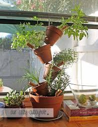 mini indoor gardening 24