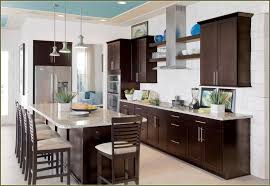 Kitchen Cabinet Espresso Color Refinishing Oak Cabinets Espresso Color Home Design Ideas