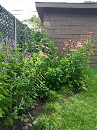 Small Picture NativePlant RainGarden in a bungalow backyard Bungalow