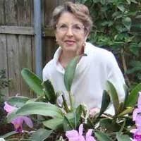 """8 """"Margo Bonner"""" profiles   LinkedIn"""