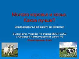 Презентация на тему Молоко коровье и козье Какое лучше  1 Молоко