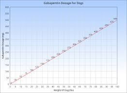 Metacam Dosage Chart Gabapentin For Dogs What You Need To Know
