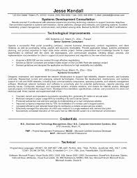 Cognos Sample Resume Unique Information Technology Resume Examples
