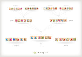 Ancestry Diagram Understanding Patterns Of Inheritance Where Did My Dna Come From